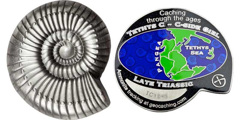 Ammonite - Late Triassic